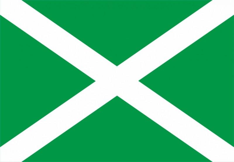 Флаг Таможенный