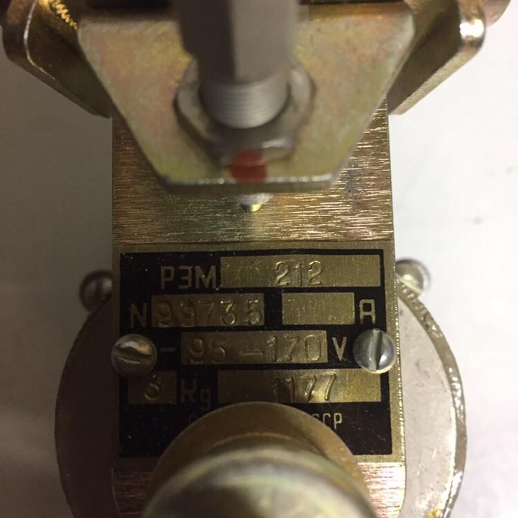 Relay REM 212 (95-170V)